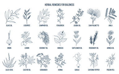 Best herbal remedies for baldness
