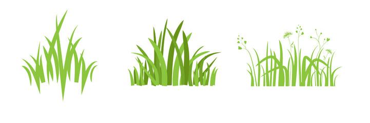 Element Eco green