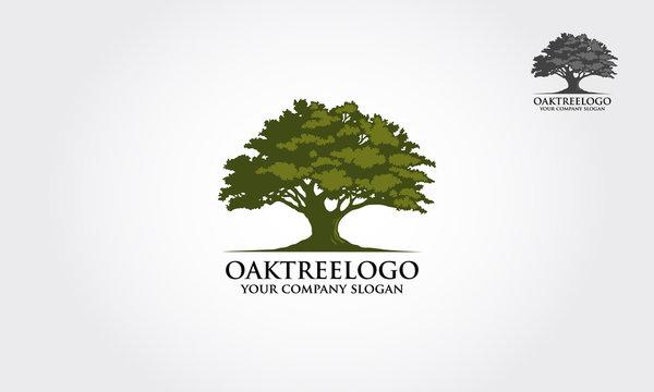 Oak tree logo illustration. Vector silhouette of a tree.