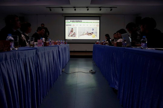 Pictures of Cloned monkeys Zhong Zhong and Hua Hua are seen at a news conference at the Institute of Neuroscience of Chinese Academy of Sciences in Shanghai