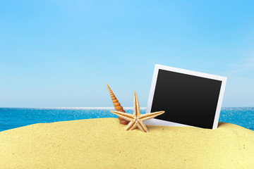 Beach composition with starfish and copy space