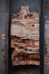 texture - a piece of old wood - background