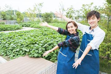 畑の前に立つ若い夫婦(農業・ガーデニング)