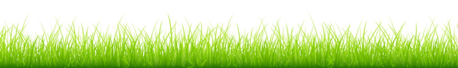 Meadow Banner Green