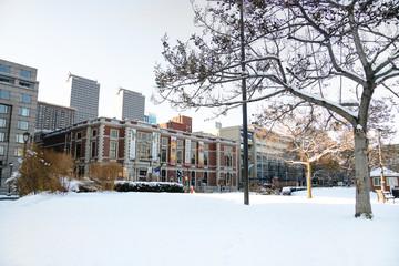 Snow in park Philadelphia