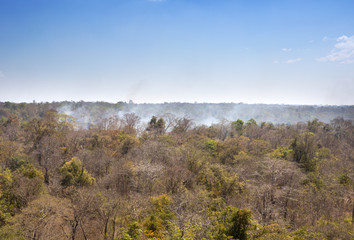 Cambodia. Aerial view on the jungle in smoke