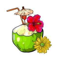 Vector coconut with tubule, umbrella and flowers. Cartoon style. Isolated on white background. Drink decorated with red hibiscus flower. Hand drawn coconut drink, cocktail. summer vacation attribute.