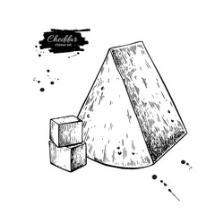 Cheddar cheese drawing. Vector hand drawn food sketch. Engraved triangle Slice