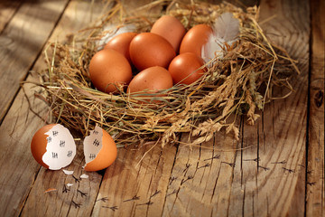Concept of an escaped young chicken.Hen organic eggs in the nest. On wooden rustic background.Selective focus