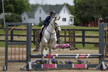 Woman jumps oxer on Arabian Cross