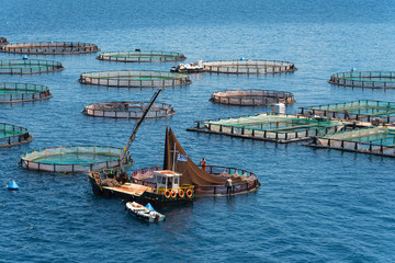 Fish farming on the sea. Corfu Island. Greece.