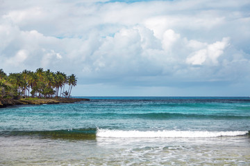 seascape in the Dominican Republic. Sea, shore with palm trees and sky with storm clouds