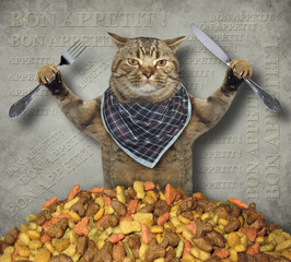 The hungry cat with a knife and a fork is near a pile of dry food. Gray background.