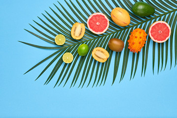 Vegan. Tropical Colorful Summer Design Set. Palm Leaf and Fresh Fruits. Trendy Fashion concept. Flat lay. Creative Bright Blue summer background.