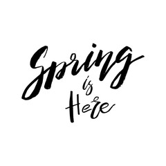 Spring is Here - Hand drawn inspiration quote. Vector typography design element. Spring lettering poster. Good for t-shirts, prints, cards, banners.