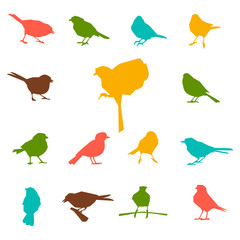 Set of silhouettes of birds.