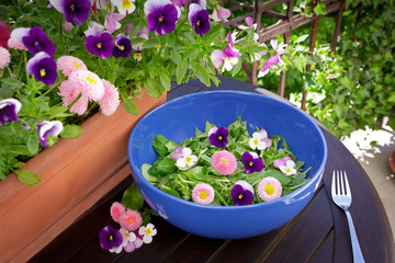 salad pansy daisy flowers bowl