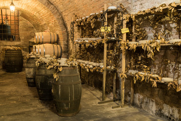 Wine barrels and pecorino cheese (a hard Italian cheeses made from ewe's milk) in a traditional cellar