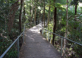Pathway  blue mountains - Sydney