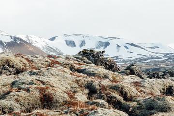 Icelandic landscape scene