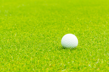 Golf ball on the green  Close up.