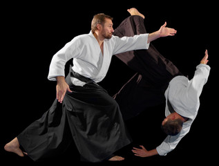 Photo sur Plexiglas Combat Men martial arts fighters