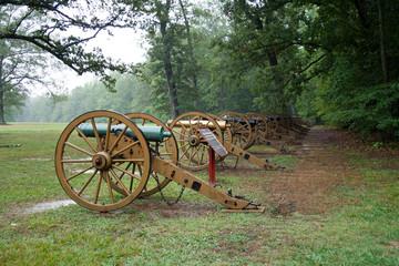 Cannons in field