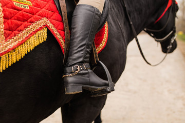 Leg of a rider in the stirrup of a saddle