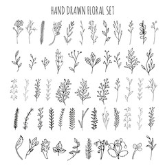 Collection of hand drawn vector florals and branches with leaves