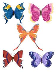 Set of butterflies.