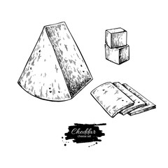 Cheddar cheese drawing. Vector hand drawn food sketch. Engraved triangle