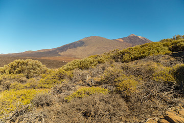 Teide National Park, Tenerife, Canary Islands - A picturesque view of the colourful Teide volcano, or in spanish 'Pico del Teide'. The tallest peak in Spain with an elevation of 3718 m