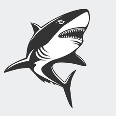 Shark emblem isolated on white