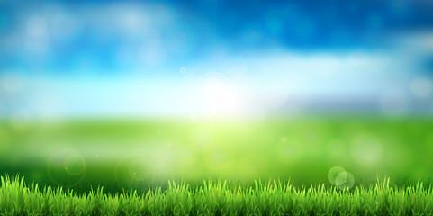 新緑 空 風景 背景