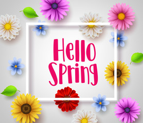 Hello spring vector banner design with white boarder, greeting text and colorful elements like daisy flowers and leaves for spring season in white background. Vector illustration.