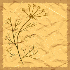 Vector greeting card background. Herbal motifs.