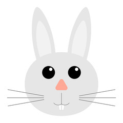 the face of a rabbit