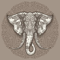 Hand Drawn Elephant Head on Mandala Background