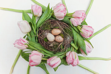 Spring greeting card. Easter eggs in the nest with moss and tulips on rustic wooden planks. Easter concept. Flat lay. Spring flowers tulips