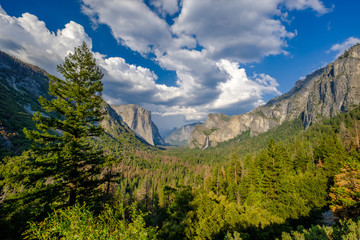 Yosemite National Park Valley summer landscape