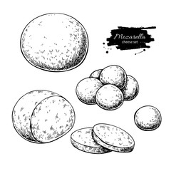 Mozzarella cheese vector drawing. Hand drawn round piece with baby mozzarella