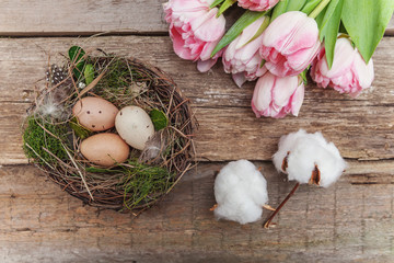 Happy easter greeting card. Easter eggs in nest with cotton, pink tulips on rustic wooden background flat lay. space for text, top view