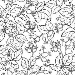 wild rose seamless pattern