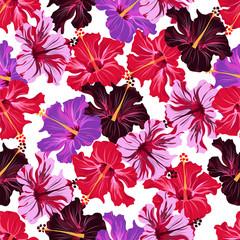 hibiscus. seamless pattern