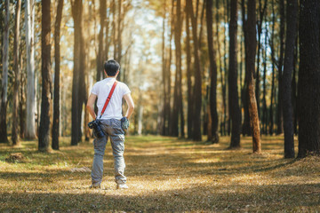 Photographer holding camera in the pine tree forest during journey