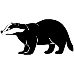 Vector image of badger silhouette on isolated white background