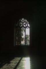 Window in Lonja in Palma de Mallorca