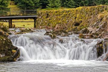 Ruisseau des Vosges