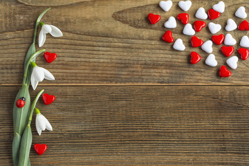 Mothers day concept of red and white hearts decorated with fresh snowdrops on wooden vintage background.