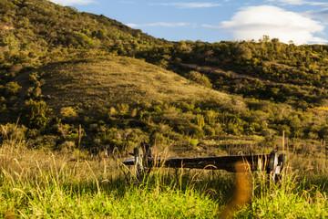 Paisajes y haciendas ganaderas en Colombia